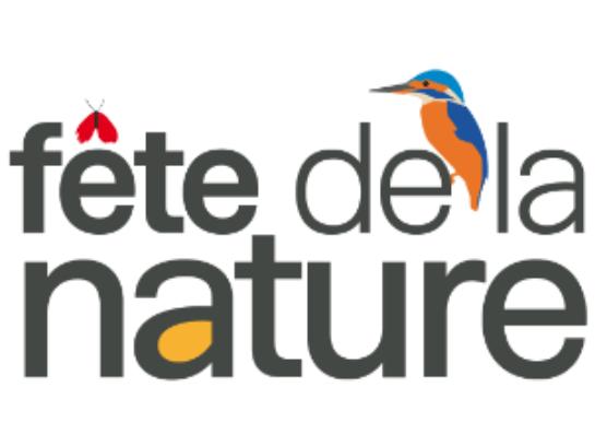 Un atelier pour la fête de la nature